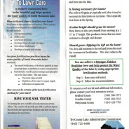 Lake Resident's Guide to Lawn Care